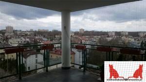 montaż kociej siatki Warszawa Kabaty